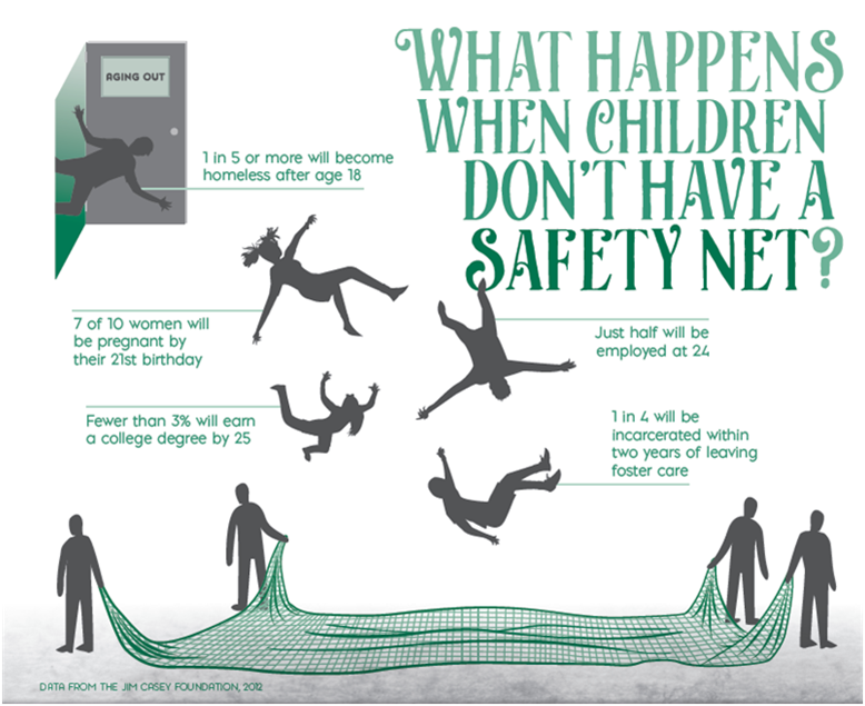 Safety Net Infographic